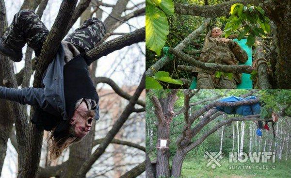 как спать на дереве