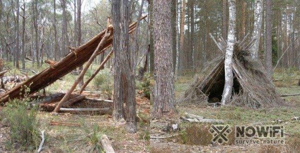 виды укрытий в лесу