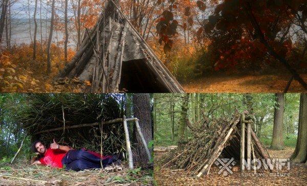 какие основные виды укрытия в лесу