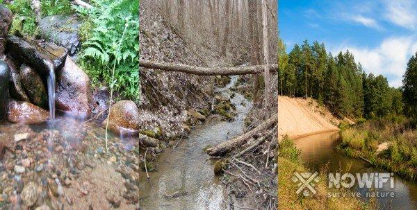 как найти воду в лесу