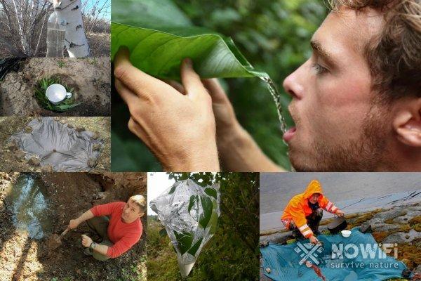 способы как добыть воду в лесу