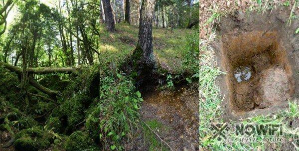 как добраться до грунтовых вод в лесу